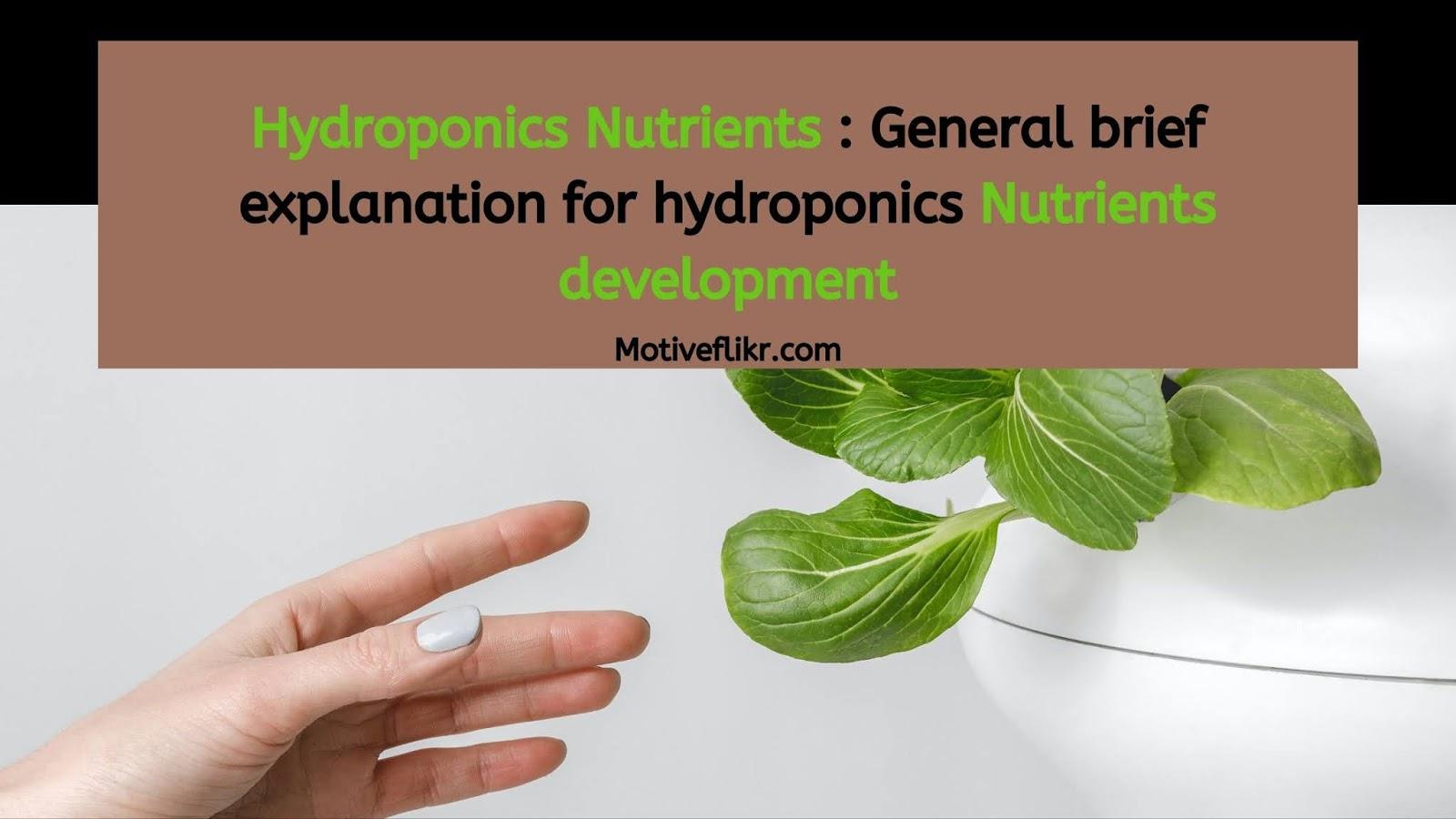 Hydroponics Nutrients : General brief explanation for hydroponics development