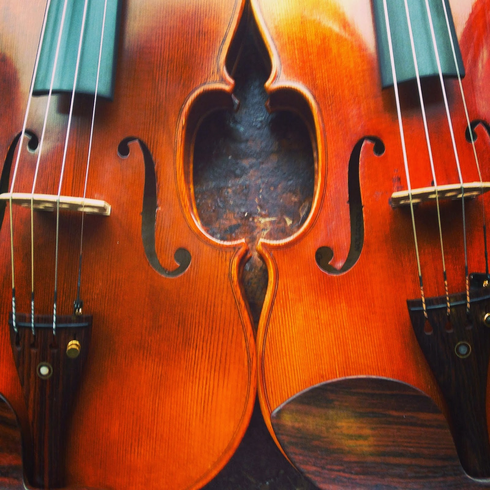 The Violin Shop: These Are A Few of Our Favorite Strings! Part I