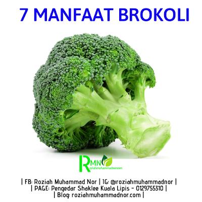 7 Manfaat Yang Terkandung Dalam Brokoli