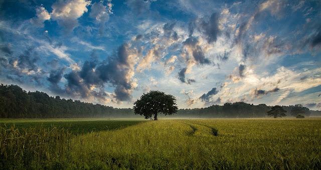 صور طبيعية 2020 اجمل المناظر الطبيعية