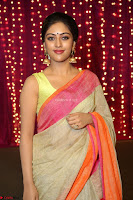 Anu Emanuel Looks Super Cute in Saree ~  Exclusive Pics 047.JPG
