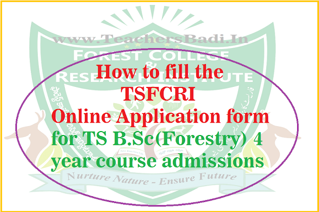 Online Application form,TS B.Sc(Forestry)course,admissions
