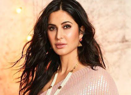 Katrina-Kartik To Be Seen In A Film Produced By SRK