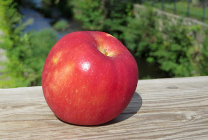 A red apple with tiny light spots.