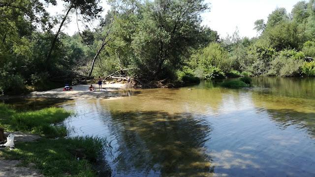 Zona Areal Praia de Verim e Água transparente