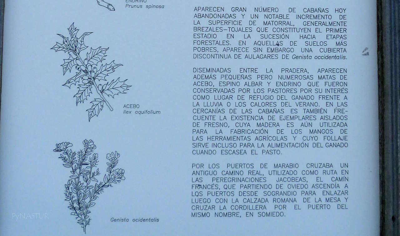 Panel descriptivo de Los Puertos de Marabio