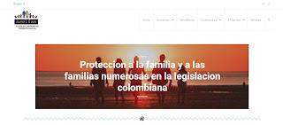 Diseño web acolfan.org