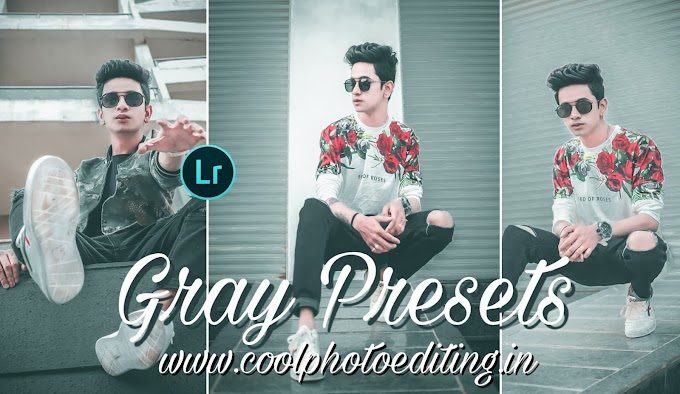 Gray lightroom presets free download