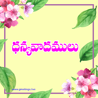 Thank you in Telugu with flowers frames