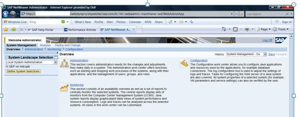 SAP Basis Tutorials: SAP Java monitoring Check list