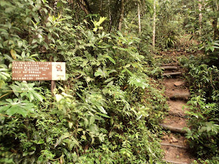 cachoeira da feiticeira, placa indicando, sinalização, trilha, ilha grande