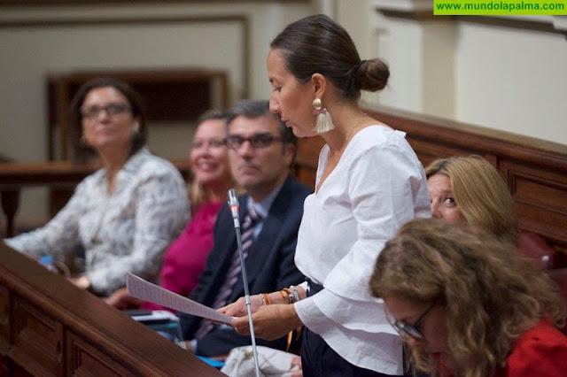 Labrador pide que CC reconozca sus errores y proponga una alternativa real para el puerto bagañete