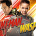 Ant-Man And The Wasp Steelbook Pre-Orders Available Now From Zavvi