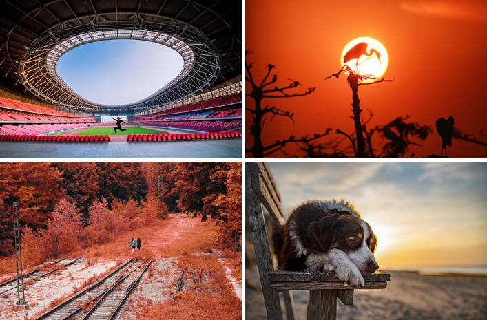 Best Photos Of The Week