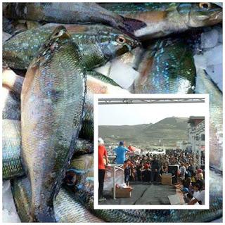 موسم سمك  الشاوري  حركية تجارية كبيرة وعادات غذائية أصيلة أليكم هذا التقرير