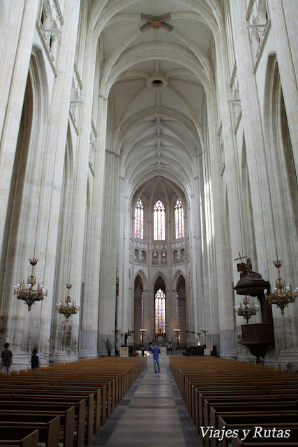 Interior catedral Saint Pierre et Saint Paul de Nantes