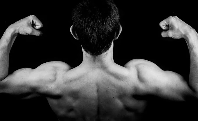 Body building? It's all about these 4 elements