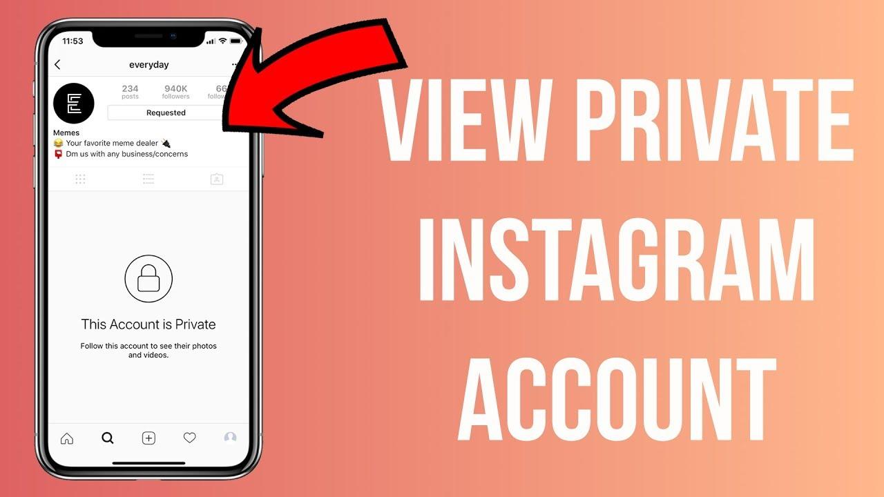 Cara Melihat Akun Instagram yang di Private Android