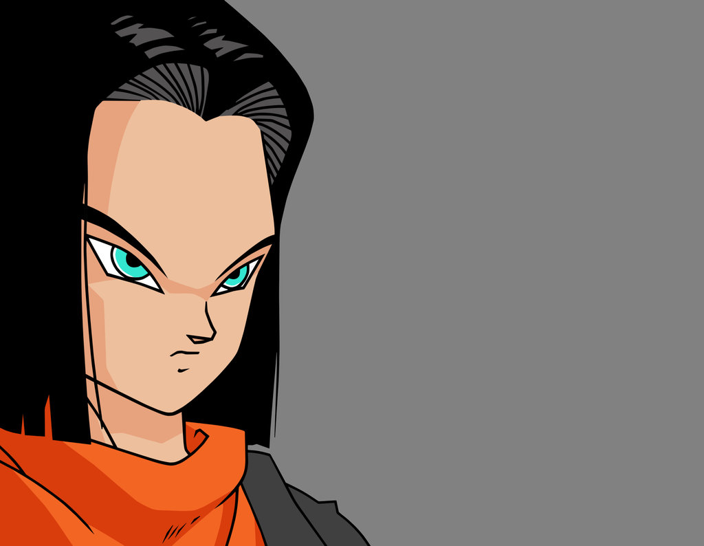 DRAGON BALL Z WALLPAPERS: ANDROID 17