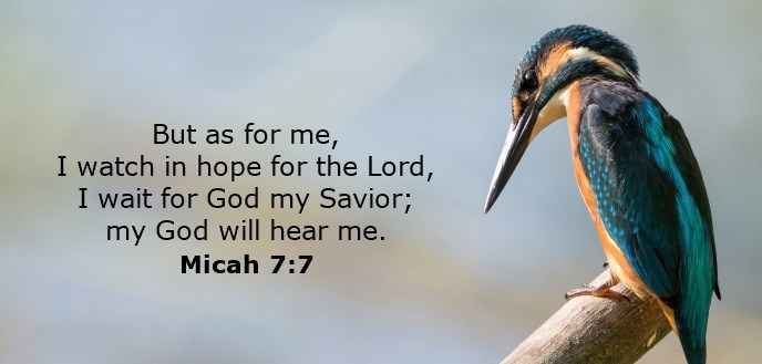 But as for me, I watch in hope for the Lord, I wait for God my Savior; my God will hear me.