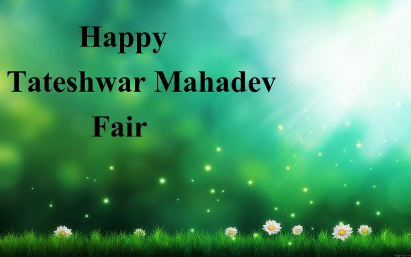 Tateshwar Mahadev Fair
