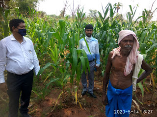 dumka-farmer-farming
