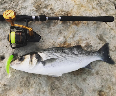 4 - Pesca e considerações