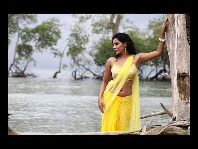 Actress Priya Anand Hot Images in Yellow Transparent Saree Actress Trend