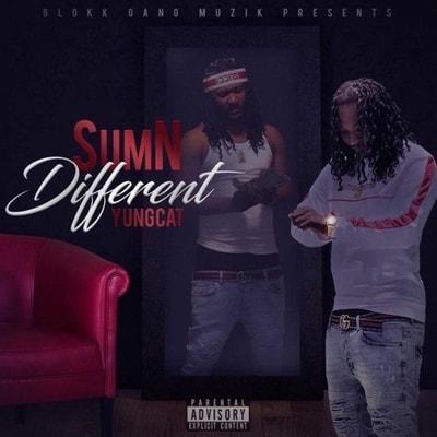 Yung Cat - Sumn Different (2019) - Album Download, Itunes Cover, Official Cover, Album CD Cover Art, Tracklist, 320KBPS, Zip album