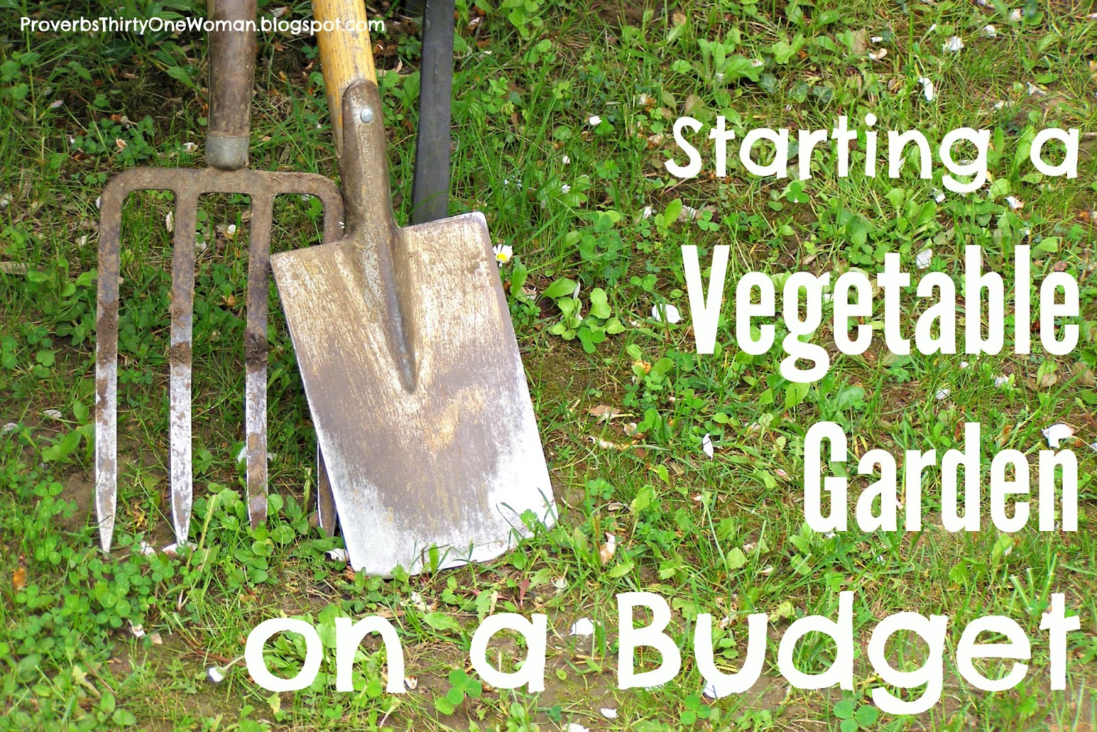 Starting a vegetable garden on a budget proverbs 31 woman for Starting a vegetable garden