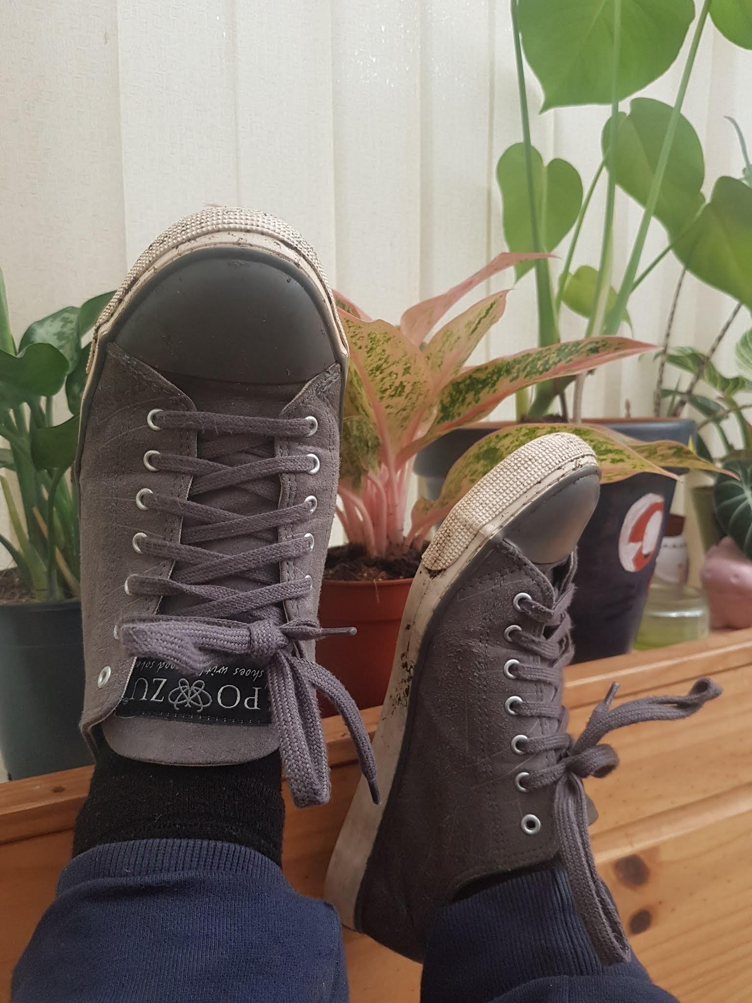 grey vegan sneakers kicked up next to houseplants