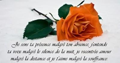 Image Damour Pour Dire Bonjour Messages Damour
