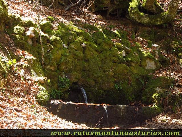 Fuente en la ruta del Tabayón del Mongallu