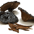 Sử dụng nấm linh chi đen có tốt không?
