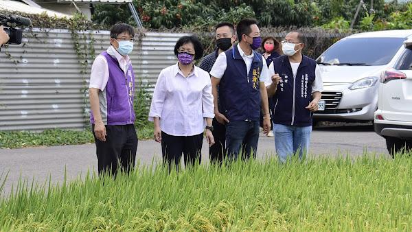 彰化稻作將收割憂缺水歉收 關懷芬園鄉農民灌溉用水