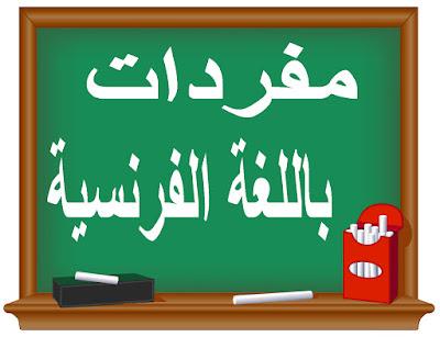 أشهرالمفردات المساعدة للتعبير باللغة الفرنسية مترجمة عربي
