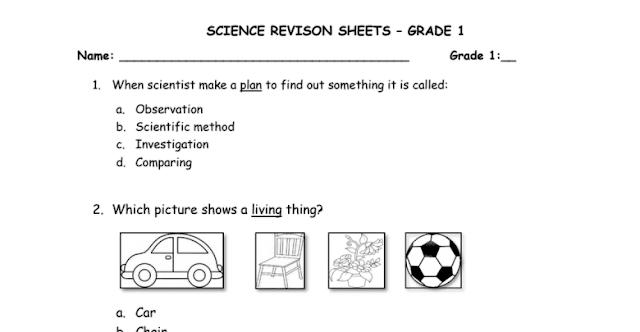أوراق عمل مراجعة علوم منهج إنجليزي صف أول فصل أول