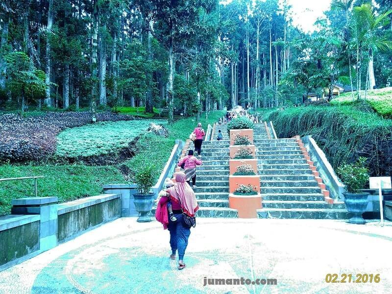 naik tangga ke kebun raya baturaden