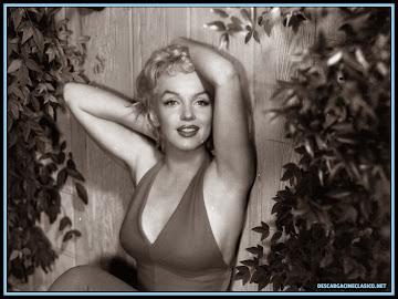 Fotografía de la hermosa Marilyn Monroe