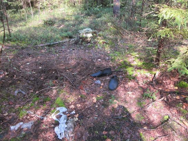 В лесополосе обнаружены скелетированные останки человека