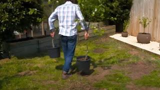 David Domoney planting fruit trees