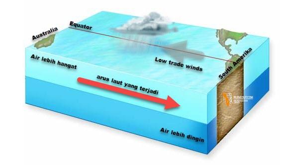 El niño Pemanasan samudera hebat terjadi di lepas pantai barat Amerika. Tekanan barometrik rendah di Pasifik tenggara. Musim hujan yang terkait dengan Samudra Hindia terganggu. Badai terjadi di lepas pantai barat Amerika Serikat.