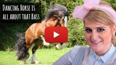 WatWatch Cheeky the Horse dance to Meghan Trainor's Classic music hit
