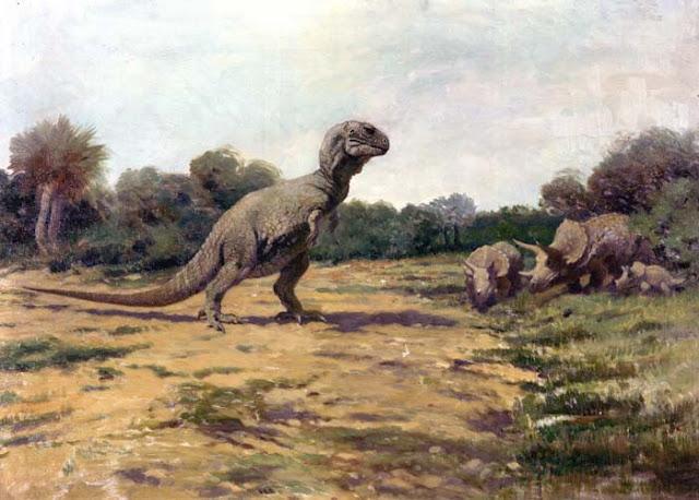 التيرانوصور Tyrannosaurus T._rex_old_posture