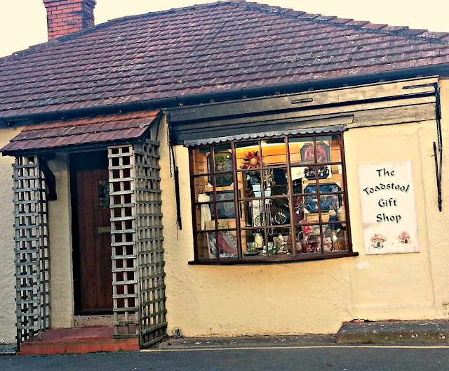 The Toadstool Gift Shop, Cheddar