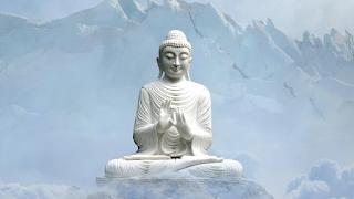 Eight Fold Path of Buddha