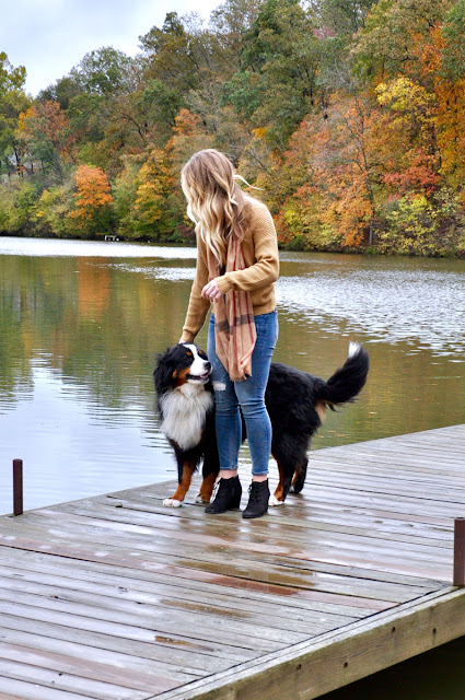 girl and dog playing on the dock