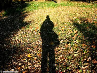 Фото дня от 1 октября 2017 года на сайте photogrammer.com.ua | Парк «Бабин Яр» | Максим Яковчук | Фотограф Максим Яковчук