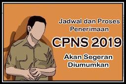 Jadwal dan Proses Penerimaan CPNS 2019 Segera Diumumkan