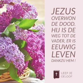 Leef je geloof: Leven dankzij Jezus!, Hillie Snoeijer